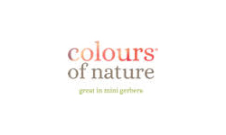 coloursofnature